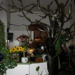 Cafe Botanica